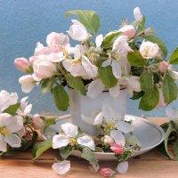 Когда яблони цветут всем девчонкам нравится........ :: Павлова Татьяна Павлова