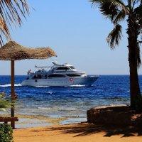 """синее море,  белый пароход"" :: виктор ------"