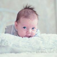 Евгений 2 месяца :: галина кинева