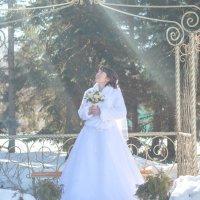 Невеста :: Юлия Земцова
