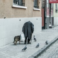 Старуха, собачка, голуби и воробушек :: НаталиЯ ***