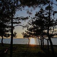 солнце опускается :: Валерий Дворников
