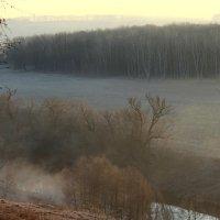 Осетр в тумане :: Александра