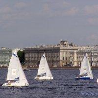 Невские яхты :: vadim