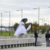 Невеста подождет :: Николай Танаев