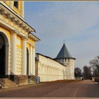 у стен монастыря :: Дмитрий Анцыферов