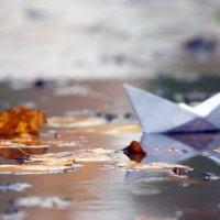 Осень,лужи,корабли ........ :: Иван Роо