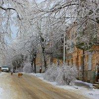 На улице Семашко :: Леонид Сергиенко