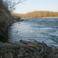 река Партизанская (Сучан) :: Анатолий Кузьмич Корнилов