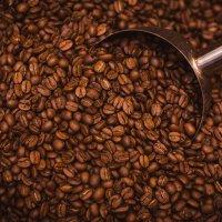 roasted coffee beans :: Денис Смирнов
