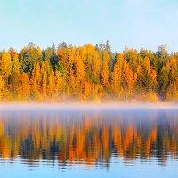 осень :: Александр Семейников