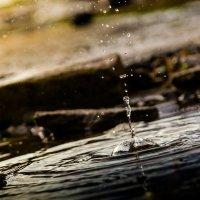 мой маленький гейзер... :: Майя Афзаал
