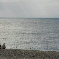 У самого синего моря...... :: Андрей Ванин