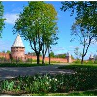 Смоленская Крепостная стена (фрагмент) :: Милешкин Владимир Алексеевич