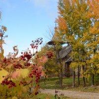Осень в селе Благовещенье. :: demyanikita