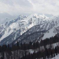 Величие гор :: Андрей Черных