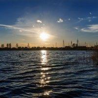 Я любовался стоя у воды... :: Анатолий Клепешнёв