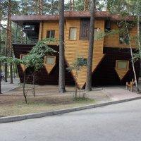 Перевёрнутый дом :: Наталья Золотых-Сибирская