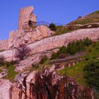 башня Бернабо Грилло :: Андрей Козлов