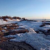 Северодвинск. Весна наступает. Дюны :: Владимир Шибинский