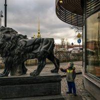 """"""" Кто хвост животному оторвал! """" :: Константин Бобинский"""