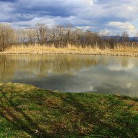 лесное озеро :: Павел Богданов