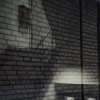 Глухая стена :: Людмила Синицына