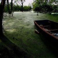 живописный пейзаж — picturesque scenery :: krivitskiy Кривицкий