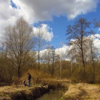 IMG_6327 - Апрель похожий на апрель :: Андрей Лукьянов