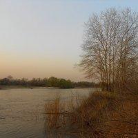 весна :: Владимир Суязов