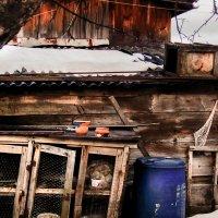 дом кроликов :: Даша Мягкая