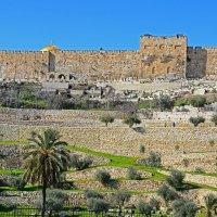 Стены Старого города (Иерусалим) :: Виктор Льготин