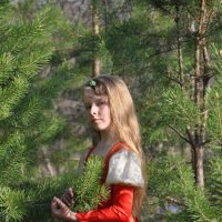 На природе в еловом лесу. :: Алексей http://fotokto.ru/id148151Морозов