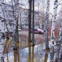 Лужи талой воды :: Andrad59 -----