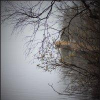 апрельский туман на Вэллене :: liudmila drake