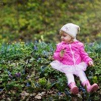 Первые цветы в лесу :: Елена Рябчевская