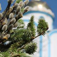Давно ушедшее вербное воскресенье :: Полина Алатырева