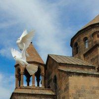 Церковь Святой Рипсиме :: Edgar Hakobyan