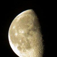 Луна :: Марина Махова
