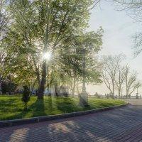 Приморский бульвар :: Александр Гапоненко