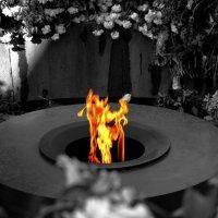Вечный огонь :: Sargis Boyakhchyan