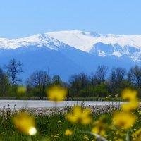 Весна в предгорье :: Евгений Палатов