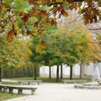 Прага осенью 2014 :: Маргарита