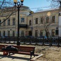 Весна :: Сергей Басов