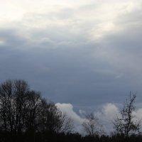 Пасмурное небо :: Mariya laimite
