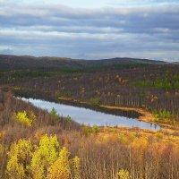 С высоты птичьего полета. :: kolin marsh
