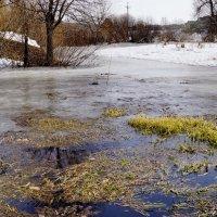 ещё в полях белеет снег,а воды уж весной шумят :: Ирина ***
