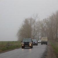 Сквозь туман и дождь апрельский... :: Tatiana Markova