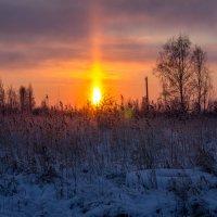 Утро :: Вадим Данилов