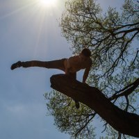 В солнечном сиянии :: Анна Маклакова